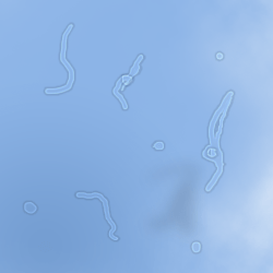 File:Floaters.png