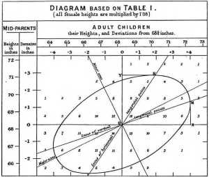 File:Galton's correlation diagram 1875jpg  Wikimedia Commons
