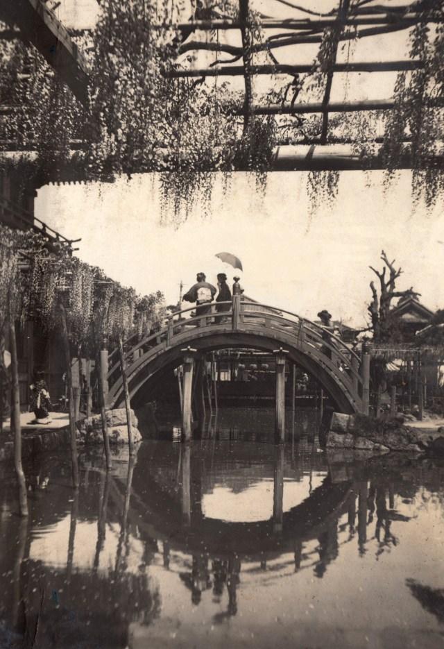 photo of Kameido Tenjin Shrine