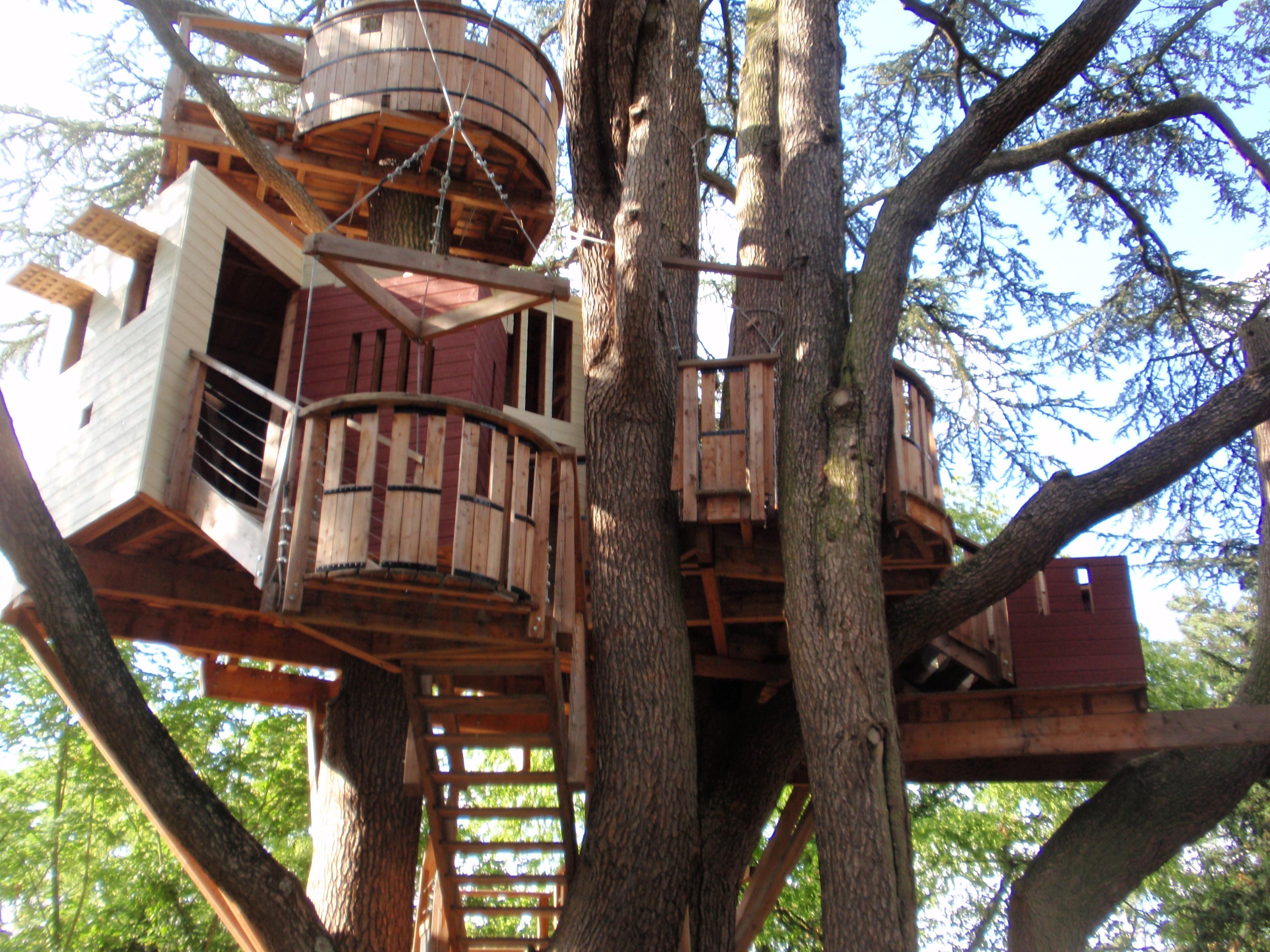 Tree House Gpedia Your Encyclopedia