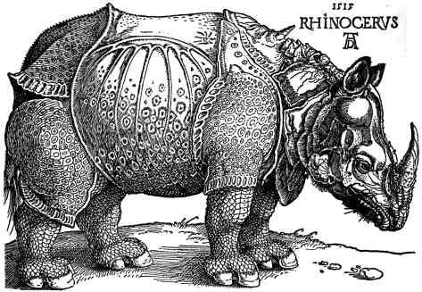 Dürer's Rhinoceros, 1515