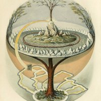 Reflection for June 16, 2013: The tree surrounded by four rivers