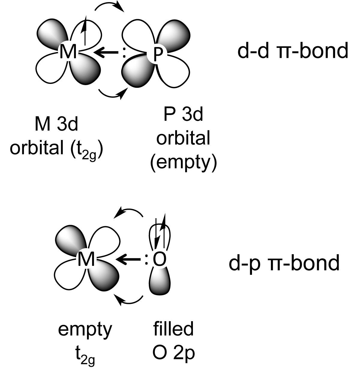 File D Pi Bonding