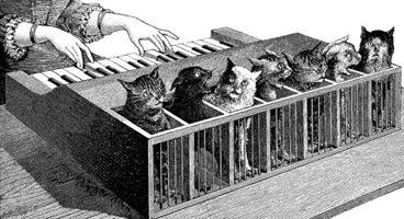Cat Piano, 1883.