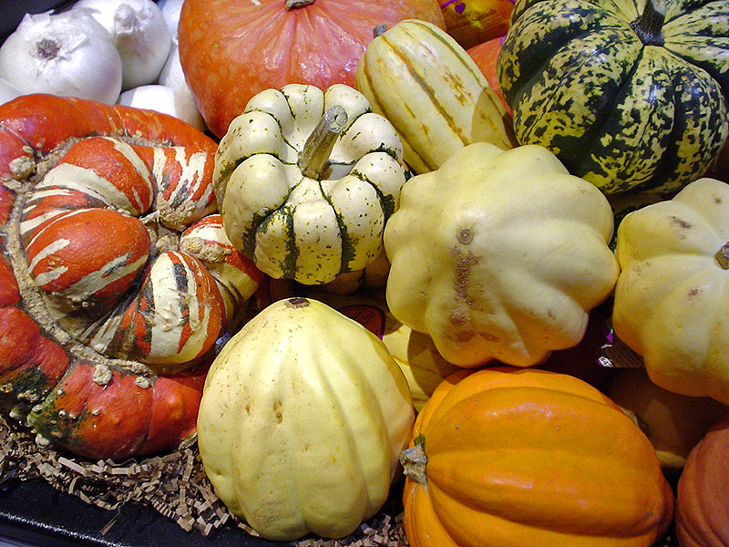 https://i2.wp.com/upload.wikimedia.org/wikipedia/commons/b/bd/Squashes.jpg