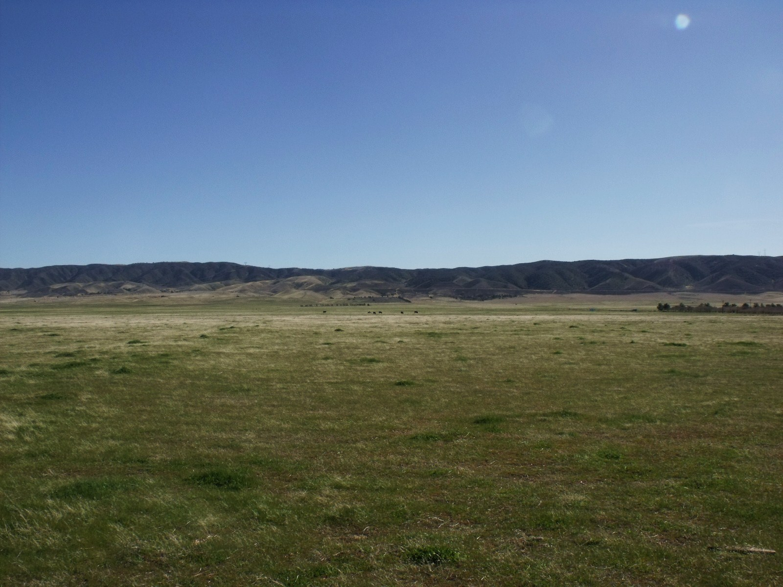 The Interior Plains and how they were created – by Amber misterwilkinson.com