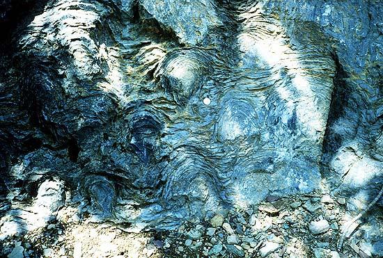 Estromatolitos precámbricos