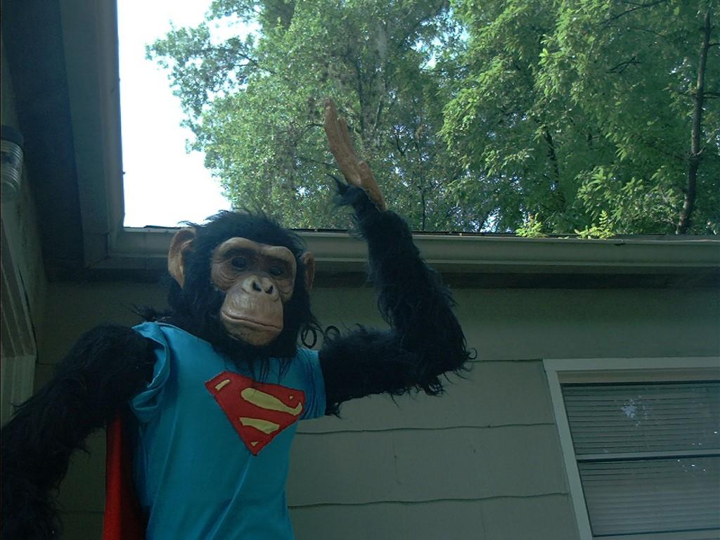 A robotic monkey, MeatSloth's garage sale, Orl...