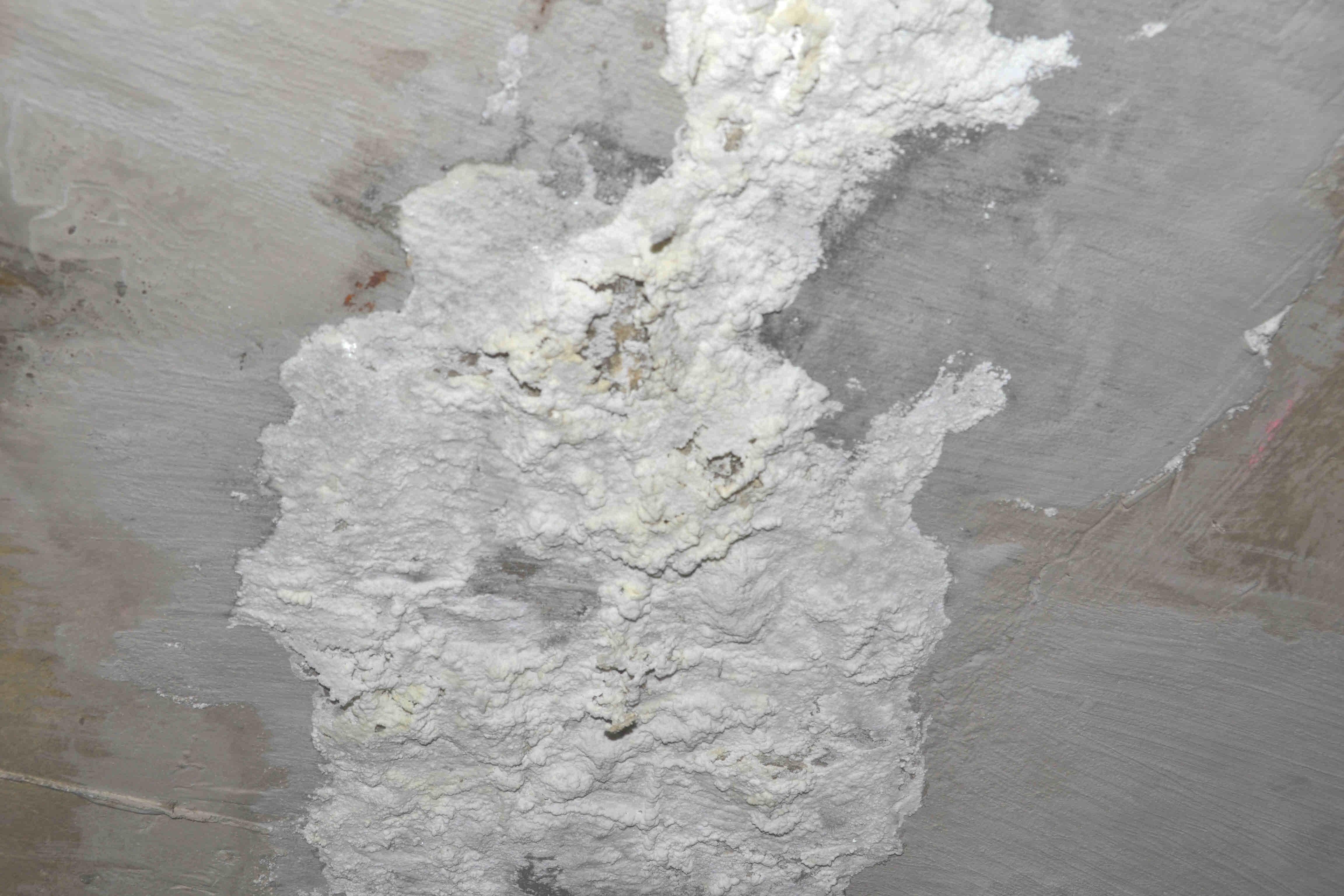 Plaster Ceiling Paint Mesmerizing 60 Bathroom Tile Paint