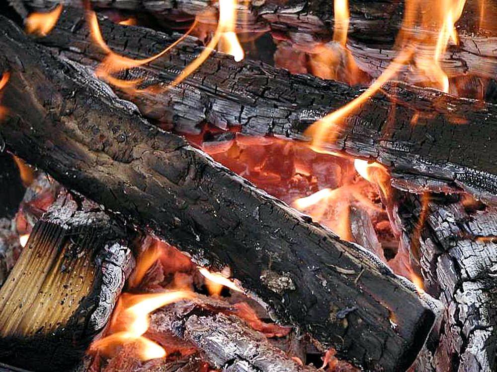 Chemical Change Burning Wood Wwwpixsharkcom Images