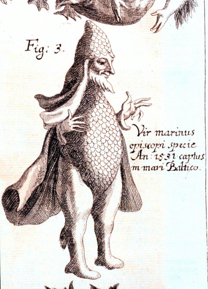 Johann Zahn, Vir marinus, 1696. Wassermann, Nix