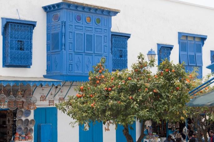 Sidi Bou Said(js)19.jpg