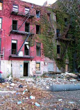 Backyard behind abandoned buildings.