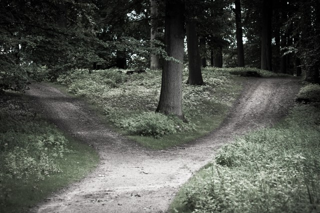 The Path Less Traveled Isn't Always The Best To Take