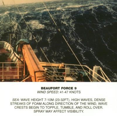 Beaufort scale 9.jpg