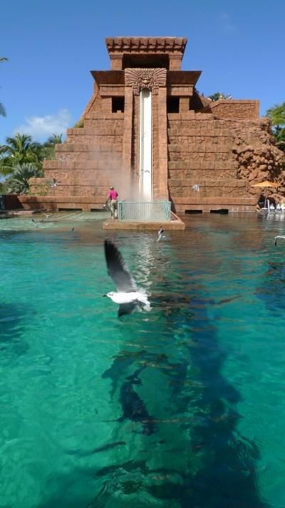 Berkas:Mayan Leap of Faith & Shark Tank Atlantis Paradise ...