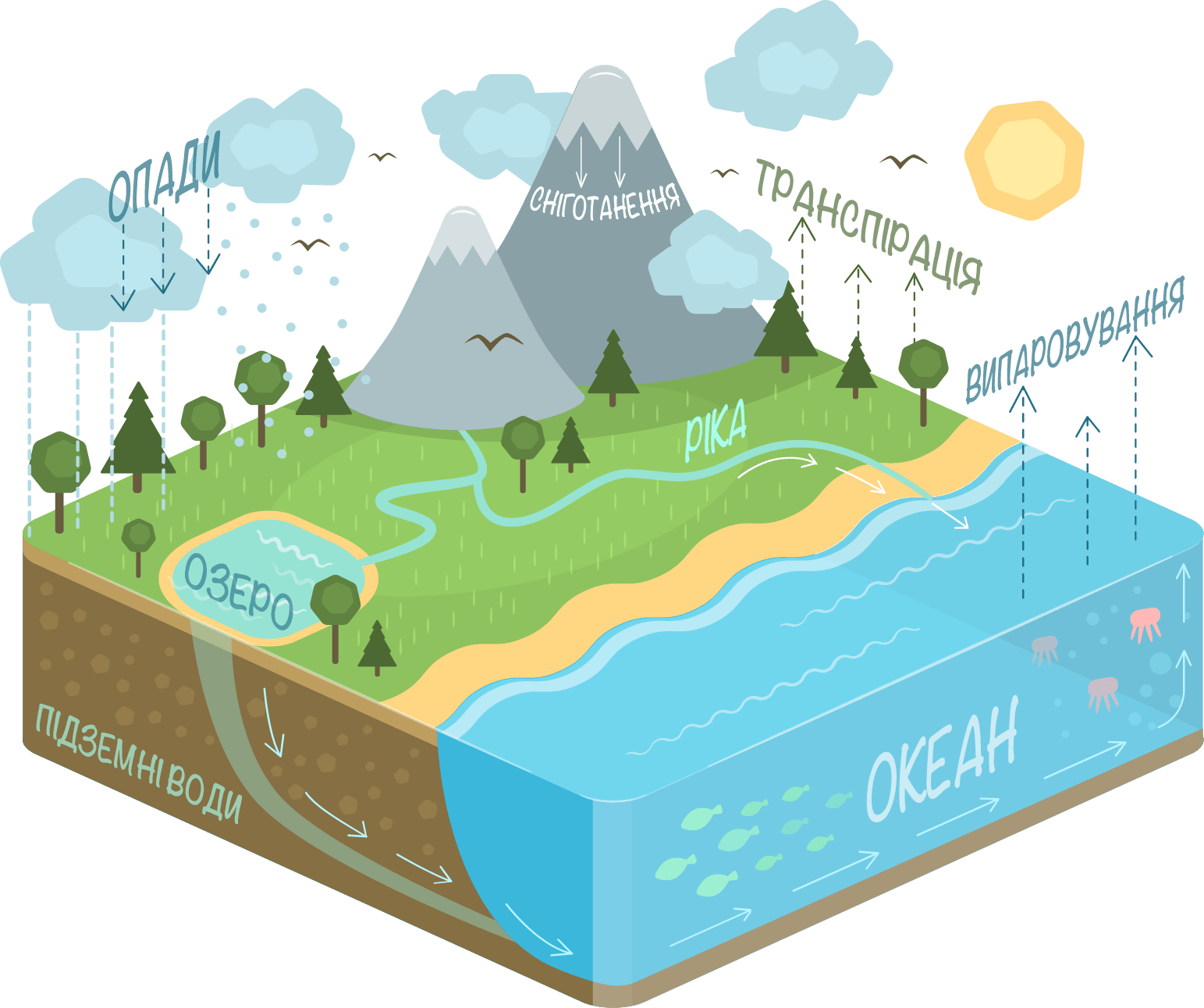 Drawing And Water Cycle Explanation