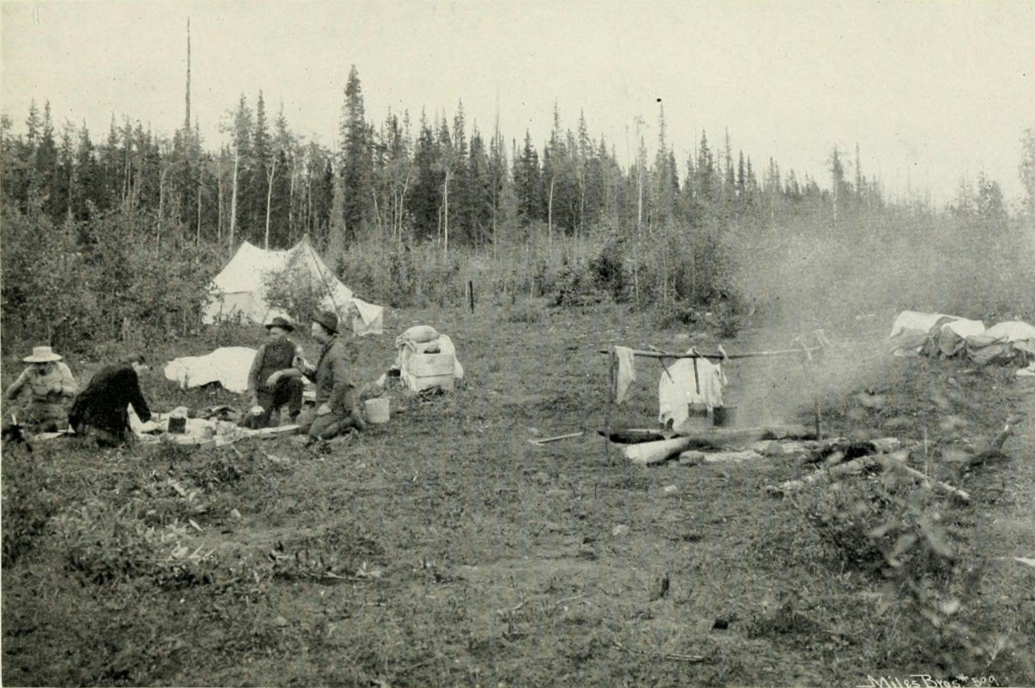 File Camping Copper River Valley Early 20th Century