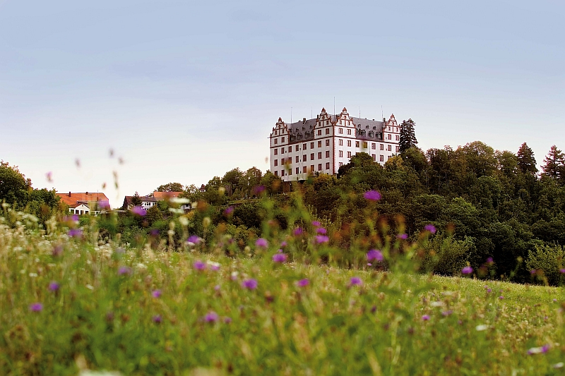 Odenwald Alemannenweg Schloss Lichtenberg