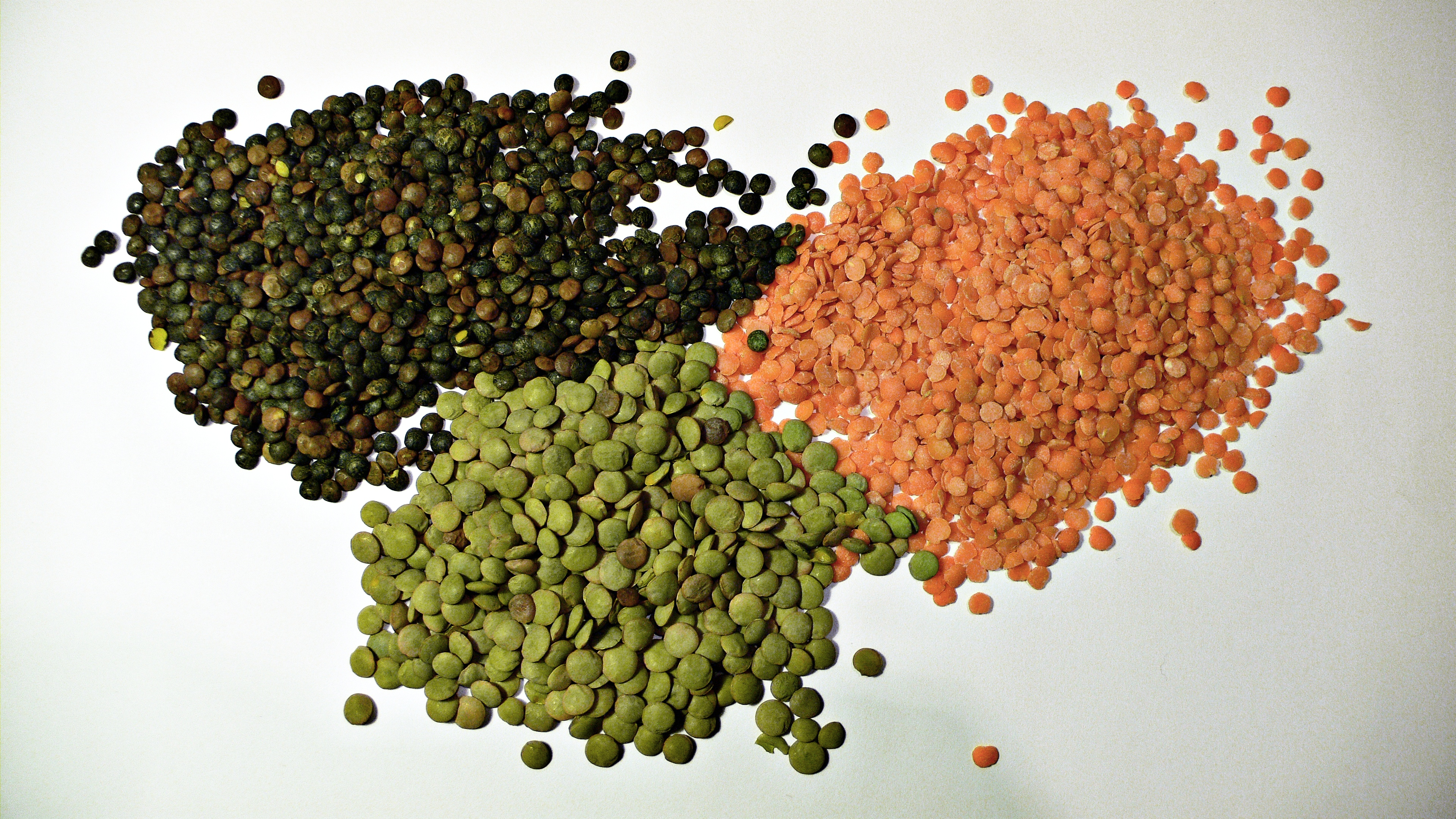 three varieties of lentil