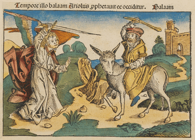 second Sunday of Advent, another image of Balaam on the donkey