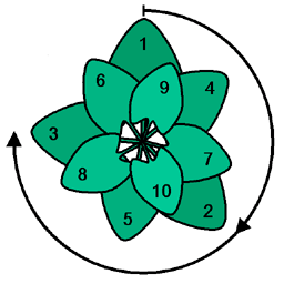 psi  in blossoms and leaves