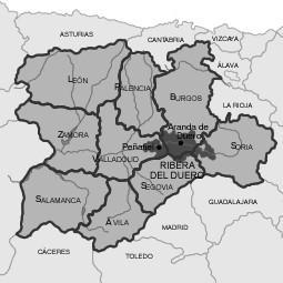 Français : Région viticole de Ribera del Duero...