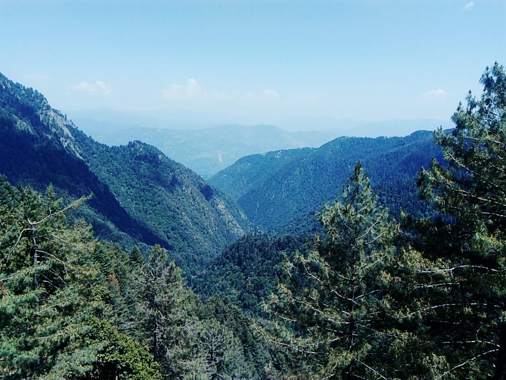 Ayubia National Park Wikipedia