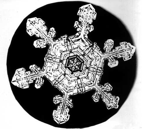 Bentley Snowflake20