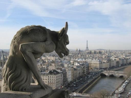 Notre dame-paris-view