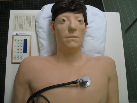 Image result for medical dummy