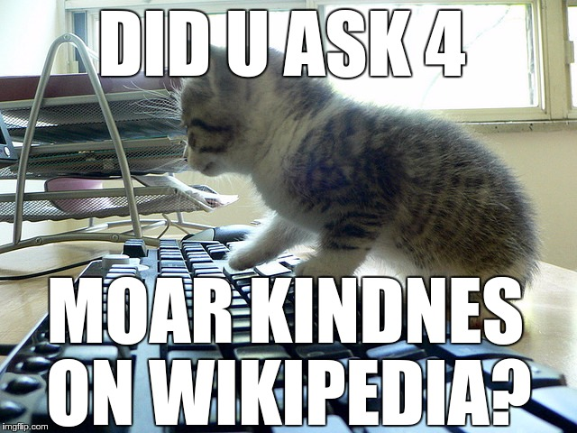 Lolcat Wikipedia