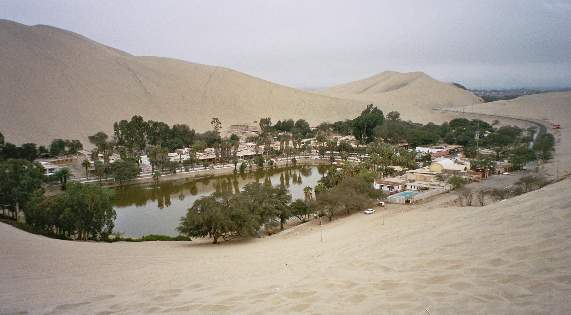 Bagaikan oase di tengah padang gurun, melegakan dan menghidupkan....