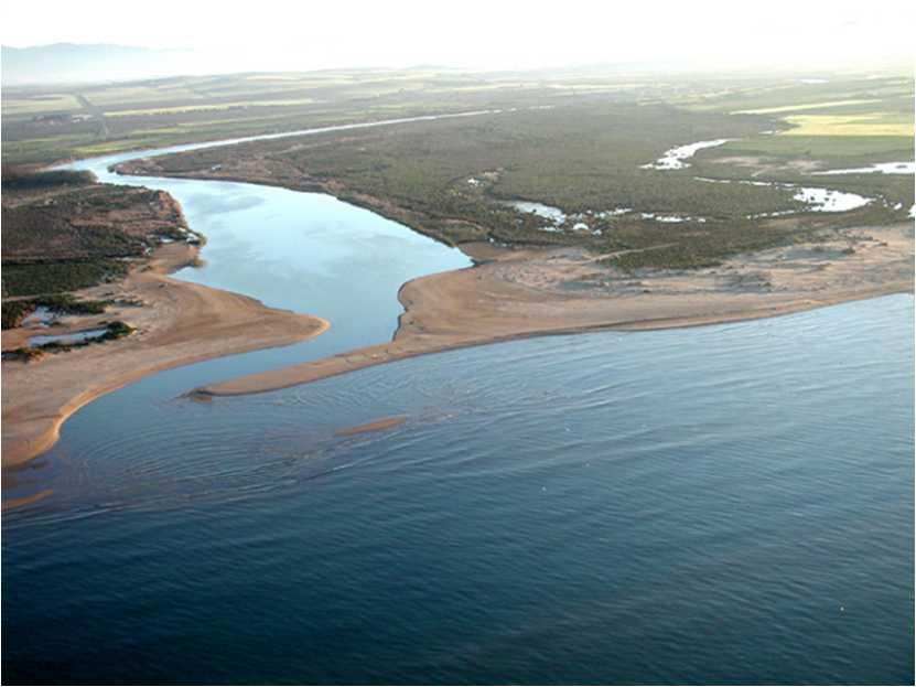 La Moulouya est un fleuve marocain qui prend naissance à la jonction du massif du Moyen et du Haut Atlas dans la région d'Almssid dans la province de Midelt . Il est long de 600 kilomètres et se jette dans la Méditerranée, dans la région du Rif, dans les plaines de Kebdana, à l'extrême nord-est du Maroc. Son embouchure est située à 14 km de la frontière algérienne.