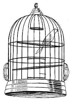 line art drawing of cage.