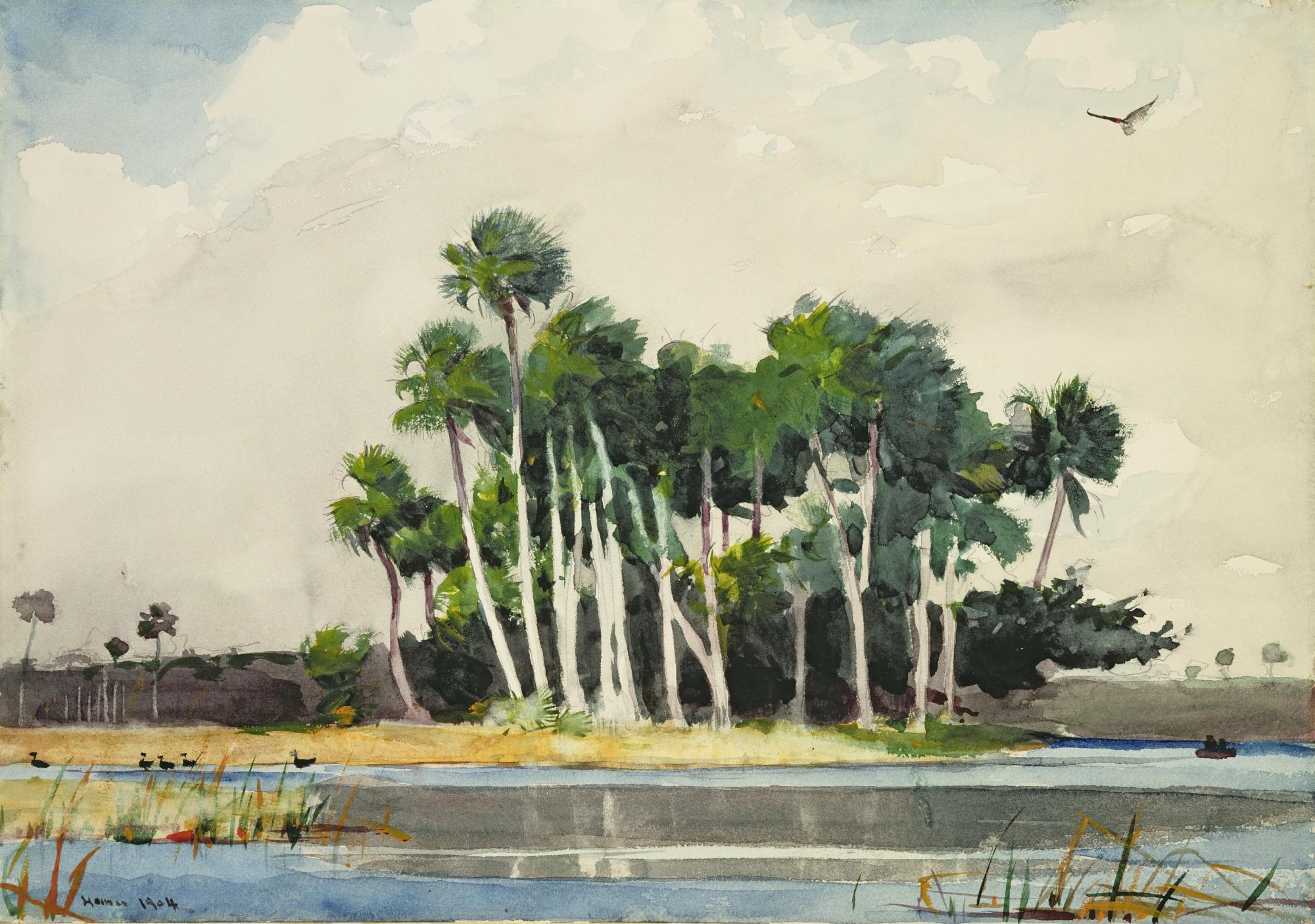 Florida Palm Trees Paintings
