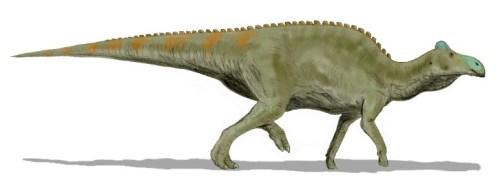 https://i2.wp.com/upload.wikimedia.org/wikipedia/commons/f/f0/Edmontosaurus_BW.jpg?resize=500%2C184&ssl=1