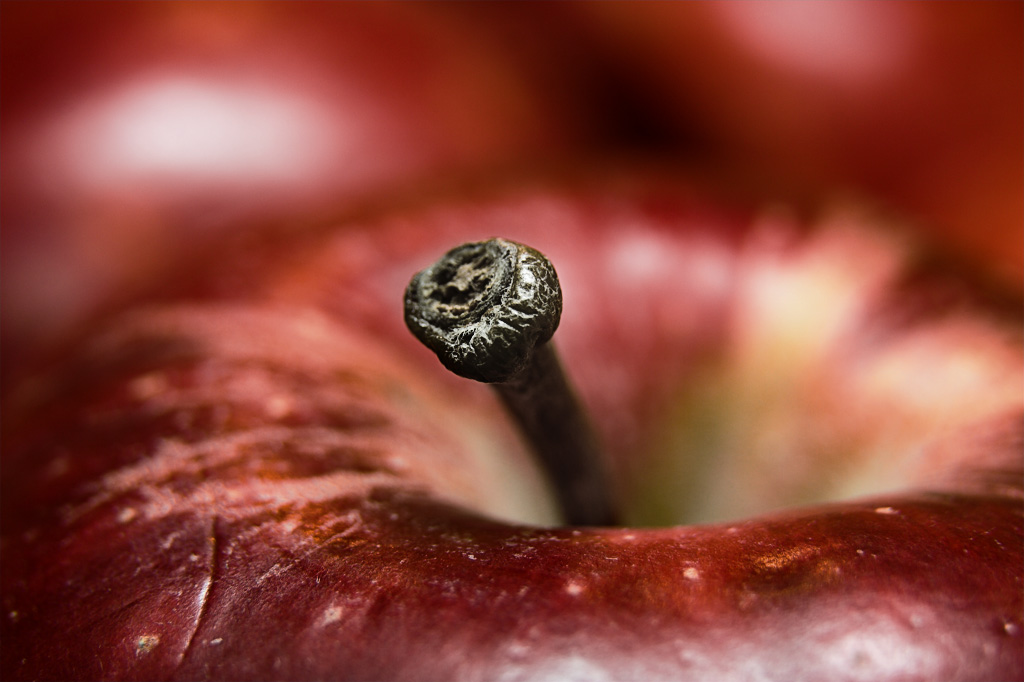 Apple Closeup.jpg