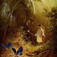 Die Abenteuer des kleinen Schmetterlingsfängers
