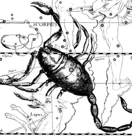 Scorpio Hevelius