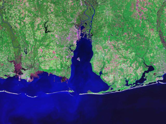 LandSat image of Mobile Bay, from NASA, 2003 (via Wikipedia)