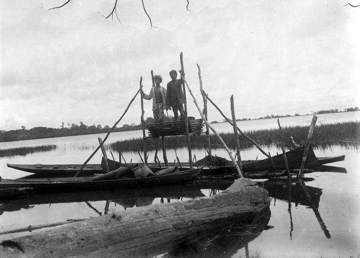Berkas:COLLECTIE TROPENMUSEUM Sagobereiding te Pulau Gawaq aan het Djempang meer in Koetai Oost-Borneo TMnr 10011500.jpg