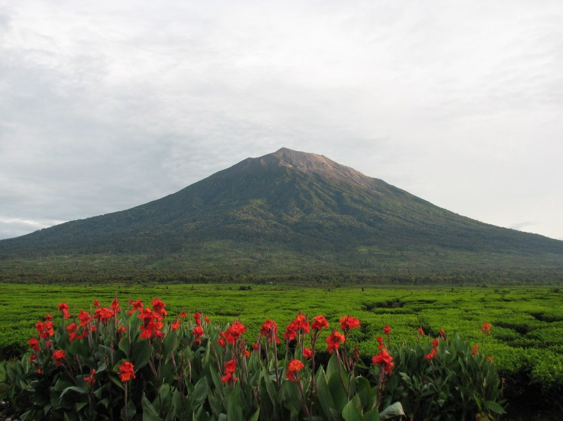Gunung Kerinci - Wikipedia bahasa Indonesia, ensiklopedia bebas