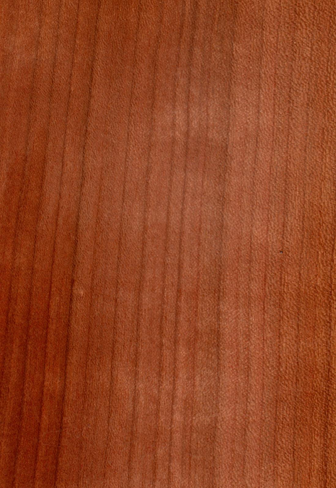Legno prunus avium.jpg