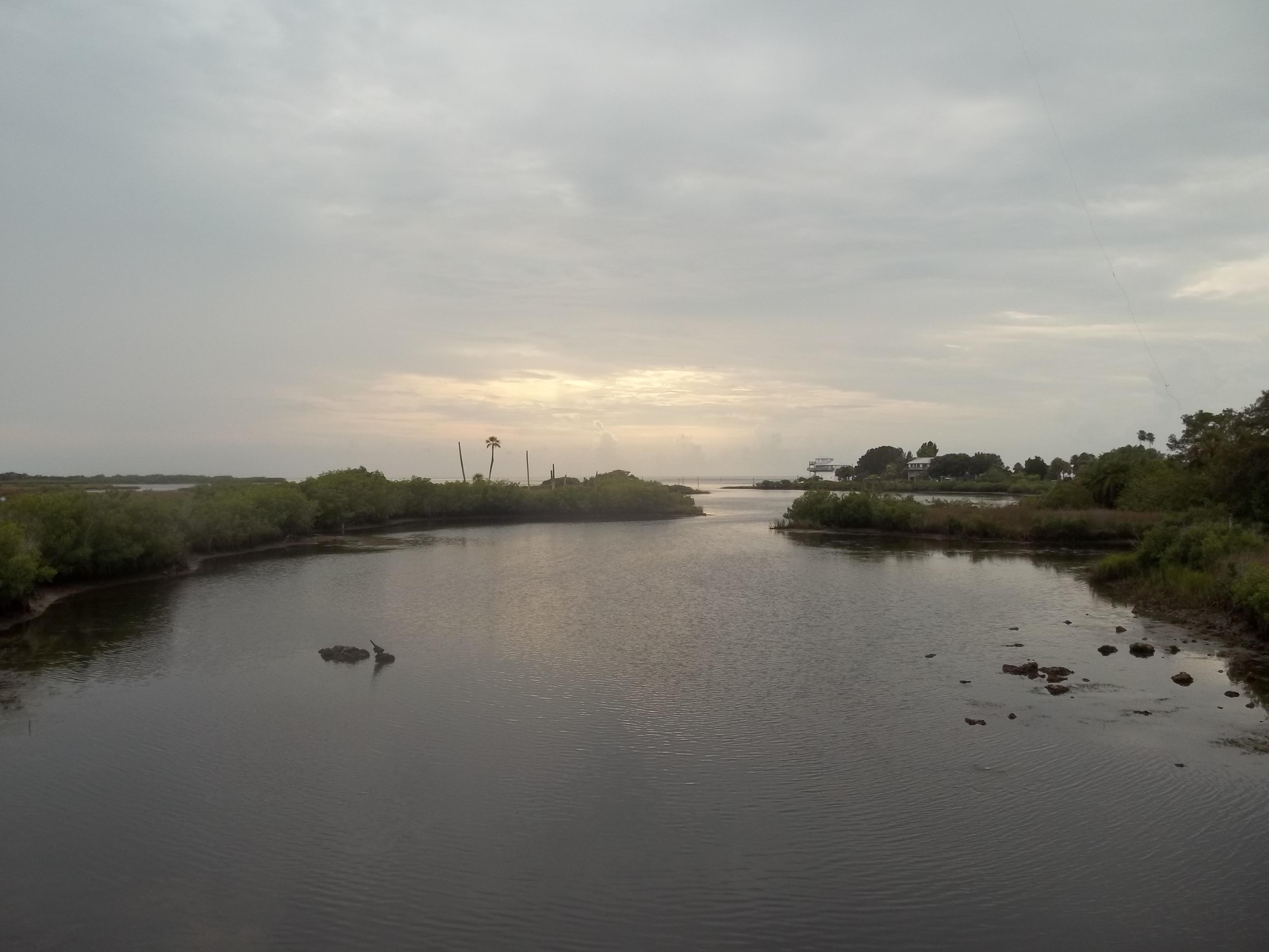 File Aripeka Fl South Hammock Creek West01