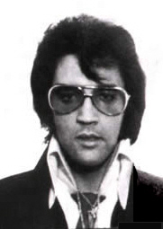 Elvis mugshot2