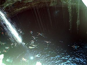 Swimmers in cenote, Yucatan, Mexico.