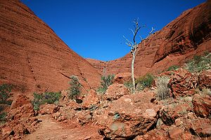 English: The Valley of The Winds, Kata Tjuta, ...