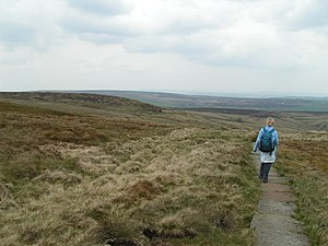 English: Pennine Way, Dick Delf Hill. Heading ...