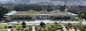 The California Academy of Sciences, Golden Gat...
